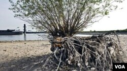 Permukaan air Sungai Waal di Druten, Belanda, jauh di bawah tingkat normal akibat kekeringan yang melanda banyak wilayah Eropa dalam musim semi ini.