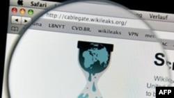 Përkrahësit e WikiLeaks zgjerojnë luftën në internet kundër Paypal e Amazon