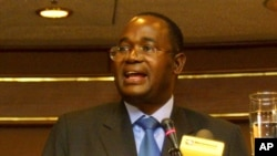 Reserve Bank Governor Gideon Gono