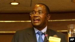 Reserve Bank Governor Gideon Gono