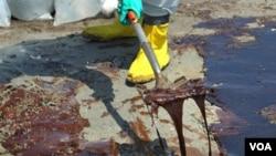 El desastre ecológico causado por BP ha motivado presiones de activistas y legisladores.