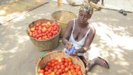 Luisa João, camponesa, Tica, Moçambique