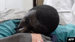 Une victime de l'attaque de Casamance, au sud du Sénégal, le 7 janvier 2018.