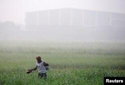 A worker walks through a farm on a smoggy morning in Mumbai, India, Dec. 11, 2017.