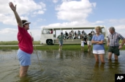 Tour guide Shirley McBride, left, urges tourists into the waters of Everglades National Park, Fla., during a tram ride stop Oct. 31, 2003.
