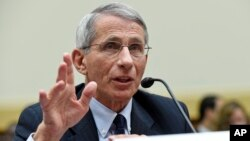 Dr. Anthony Fauci, director of the National Institute of Allergy and Infectious Diseases, testifies before the House Foreign Affairs subcommittee on Africa, Global Health, Global Human Rights, and International Organizations hearing on the Ebola virus on Capitol Hill Sept. 17, 2014.