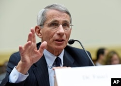 FILE - Dr. Anthony Fauci testifies before the House Foreign Affairs subcommittee on Africa, Global Health, Global Human Rights, and International Organizations.