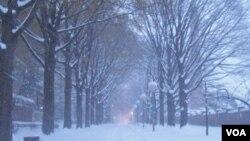 Esta nevada le cuesta a Washington unos seis millones de dólares.