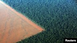 El bosque nebuloso del Amazonas bordeado por tierra deforestada para plantar soja en el estado brasileño de Mato Grosso.