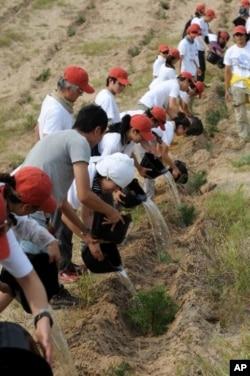 志願工作者參與植樹造林活動