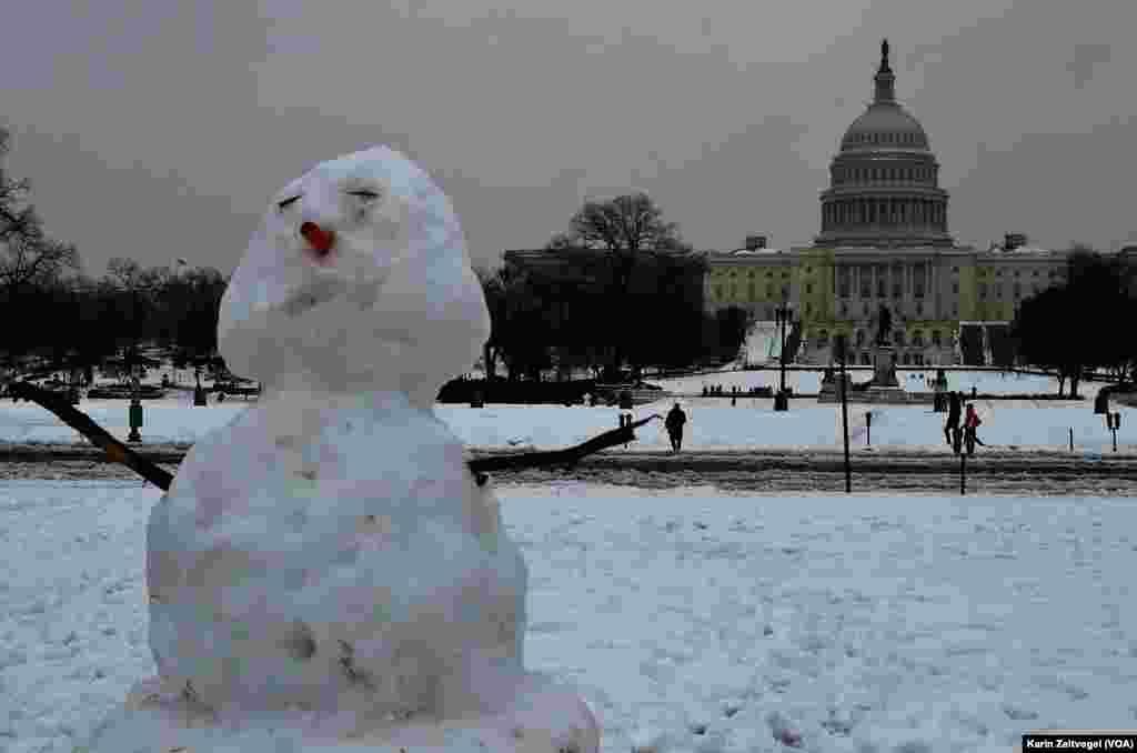 تعطیلی ادارات و دانشگاهها و مدارس واشنگتن، فرصتی برای برف بازی و ساختن آدم برفی - ۱۳ فوریه ۲۰۱۴