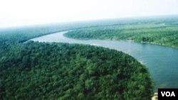 Brasil anunció que la deforestación del Amazonas es la más baja desde 1988.