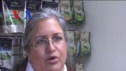 Bisnis Perawatan Anjing - Liputan Feature VOA Maret 2012