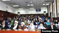Afg'oniston parlamenti yuqori palatasi