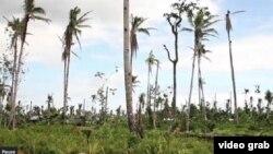 les Philippines après le passage du typhon Haiyan. 7 mars 2014.
