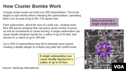 새로운 집속탄 사용의 위험성을 알리는 인터넷 정보 내용. 휴먼라이츠워치는 최근 사우디 주도 연합군이 예멘 공습에 집속탄을 사용했다고 주장했다.