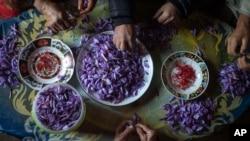 دا دریم ځل دی چې د افغانستان زعفران د اروپايي ټولنې له خوا په نړۍ کې د تر ټولو لوړ کیفیته زعفرانو جایزه ګټي.