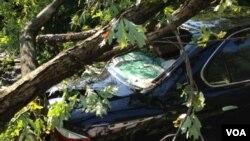 Las tormentas no sólo derribaron líneas del tendido eléctrico sino que también provocaron muertos y destrozos.