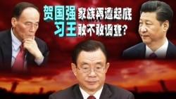焦点对话:贺国强家族再遭起底,习王敢不敢调查?
