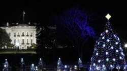 The National Christmas Tree on the Ellipse across from the White House