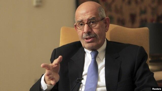 Cựu Tổng giám đốc IAEA Mohamed ElBaradei lãnh đạo đảng đối lập hàng đầu ở Ai Cập nói rằng ông không muốn là một phần của 'nền dân chủ giả hiệu'