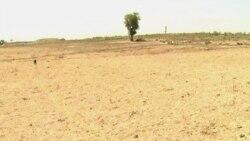 Des communautés rurales camerounaises luttent pour leurs terres ancestrales