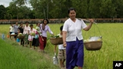 A Cambodian woman, foreground, carries baskets loaded with food together with her neighbors as they walk through rice paddy fields after a Buddhist ceremony locally called Bonn Kathen at Prey Thom village, Takeo province, about 80 kilometers (50 miles) south of Phnom Penh, Cambodia, Sunday, Nov. 6, 2011. (AP Photo/Heng Sinith)
