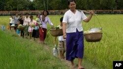 Femmes et enfants dans les rizières de Prey Thom, dans la province de Takeo, au Cambodge, le 6 novembre 2011.