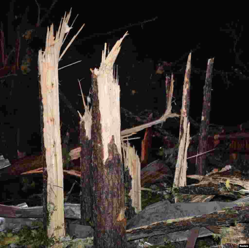 منظره درختان پس از عبور گردباد یکشنبه شب در ایالت آرکانزاس - می فلاور، ۲۷ آوریل ۲۰۱۴