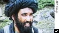 Taliban Leader Captured