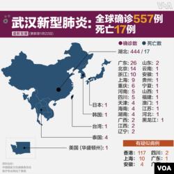 武汉肺炎地图