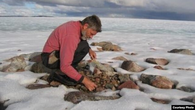 Professor Gifford Miller is shown here collecting dead plant samples from beneath a Baffin Island ice cap. (Photo courtesy Gifford Miller, University of Colorado Boulder)