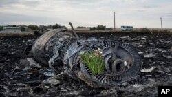 Обломки малазийского авиалайнера, упавшего в Украине (архивное фото)
