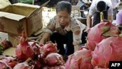 Các mặt hàng cao su, cà phê và trái cây được thương nhân Trung Quốc mua rất mạnh
