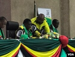 President Emmerson Mnangagwa and Obert Mpofu at a Zanu PF Central Committee meeting.