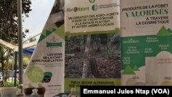 Dix-huit ONG pour améliorer les conditions de vie des riverains du bassin du Congo
