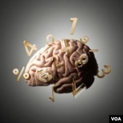 Menurut tim yang dipimpin Cohen Kadosh, terapi listrik mengubah unsur kimia otak sehingga membuat otak lebih mudah beradaptasi, dan sebagai akibatnya, lebih mudah memroses angka.