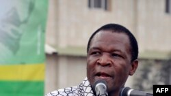 Thomas Borrel au micro de VOA Afrique