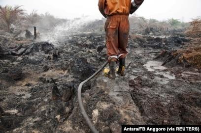 Seorang petugas pemadam kebakaran dari Badan Penanggulangan Bencana Daerah mencoba memadamkan kebakaran lahan gambut di perkebunan kelapa sawit di Pelalawan, Provinsi Riau, 26 September 2015. (Foto: Antara/FB Anggoro via REUTERS)