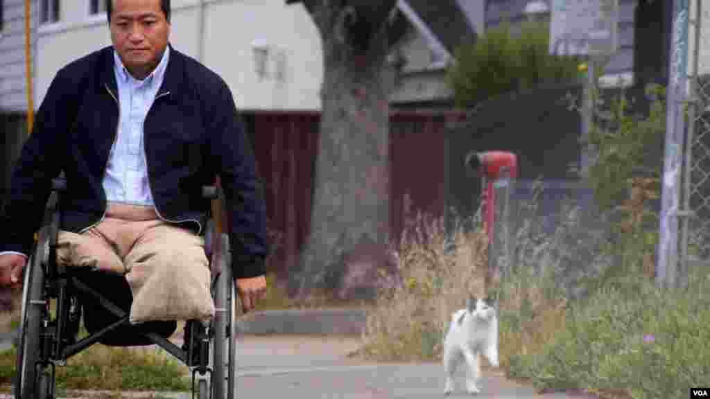 方政家猫跟着轮椅跑(美国之音国符拍摄)