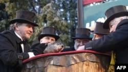 Predsednik kluba ljubitelja mrmota, Bil Dili (desno) posmatra reagovanje mrmota Fila, Panksatoni, Pensilvanija, 2. februar 2011.