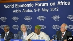 Former Nigerian President Olusegun Obasanjo (2nd R) addresses a session alongside Kofi Annan (L), chairman of Alliance for a Green Revolution, Irish rock star Bob Geldof (2nd L) and Peter Eigen, a member of the Africa Progress Panel (APP), during the Worl