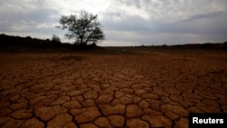 Tanah yang pecah-pecah karena kekeringan terlihat di Karoo, Afrika Selatan. Studi mengatakan akses terhadap air bersih sangat tidak merata di Afrika.