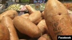 ဆြီဒင္ ICA Supermarket ကုမၸဏီက ေလဆာနဲ႔ တံဆိပ္ရုိက္ထားသည့္ ကန္စြန္းဥမ်ား။