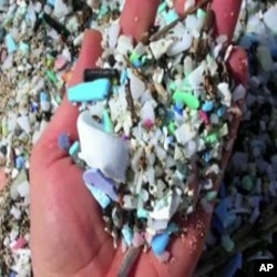 Plastic trash in oceans enters the marine food chain, hurting or killing ocean life.