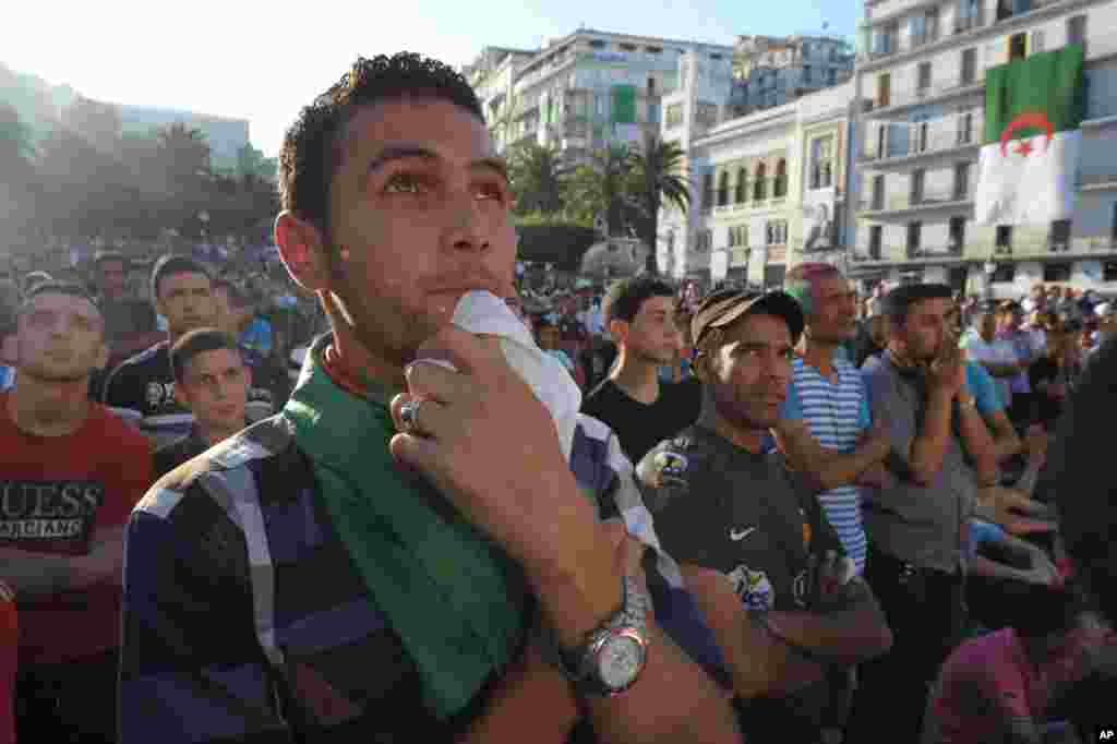 Algerian soccer fans watch their team's World Cup soccer match with Belgium on a large screen, in Algiers, June 17, 2014.