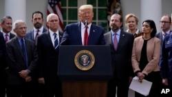 美国总统特朗普在白宫记者会上宣布国家紧急状态。(2020年3月13日)