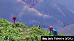 Vinhas, Fogo, Cabo Verde