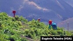 Cabo Verde: Sustentabilidade e desenvolvimento, desafios do novo Executivo - 2:45