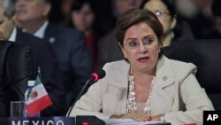 Ex-Mexico's Foreign Minister Patricia Espinosa, seen in this 2011 file photo, has been nominated to be the new U.N. climate chief, helping to bolster a 2015 Paris Agreement to shift the world economy from fossil fuels, officials said on Tuesday.